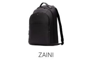 Zaini Lostivale